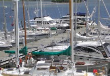 Dock facilities